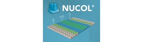 Nucleos naturales